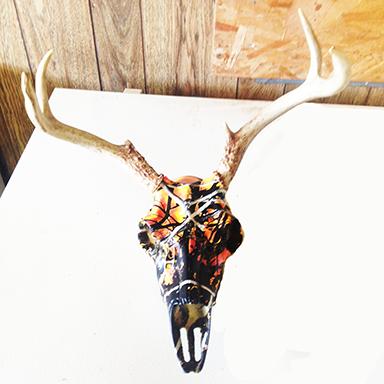dutch neck deer butchering deer antler mounts and deer